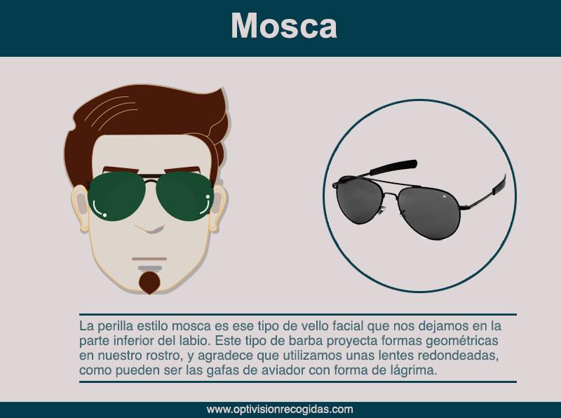 Gafas de Sol - Barba estilo Mosca